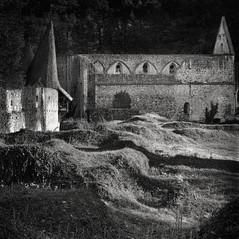 carthusian monastery Seitz 1