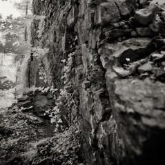 castle Wildhaus 3