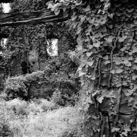 castle Walderstein 7