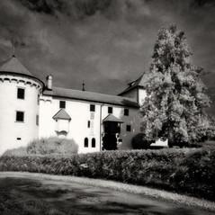 castle Wagensperg 6