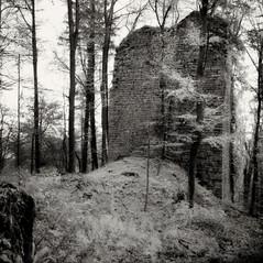 tower Reutenburg 1