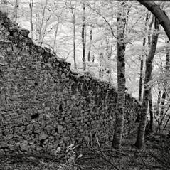 castle Steegberg 8