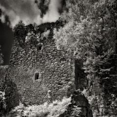 castle Wiederdriess 3