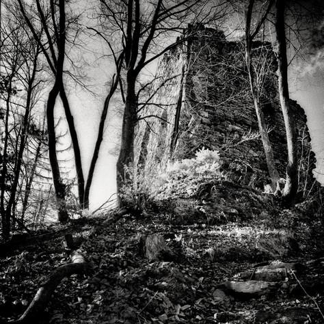 castle Weichselberg 1