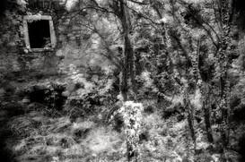 dvorec Jablanica_06.jpg