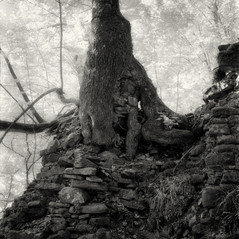castle Gutneck 4