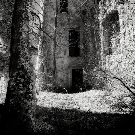 manor Trilleck 1