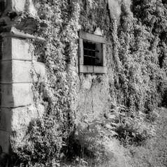 manor Preysegg 3