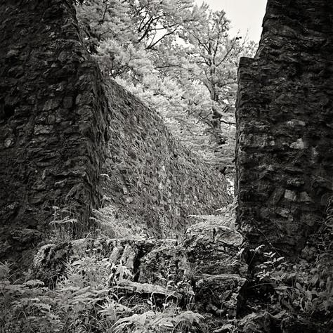castle Friedrichstein 1