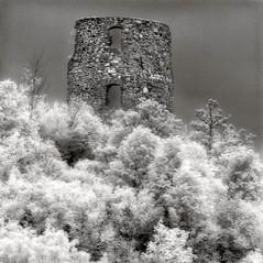 castle Neuhaus 4