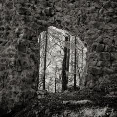 castle Waldeck 2