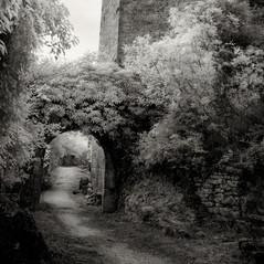 castle Duecastelli 2
