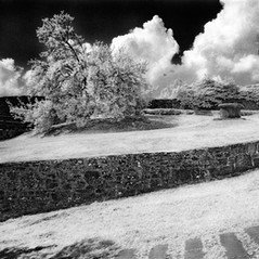 castle Bremb 8