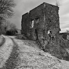 manor Snosetch 1