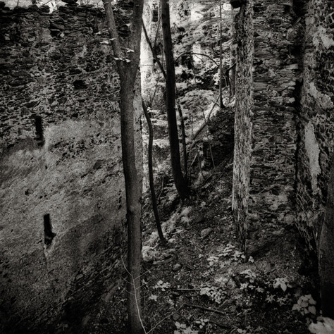 castle Buchenstein 5