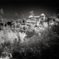 castle Hörberg 1