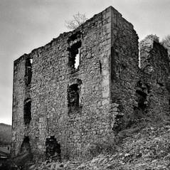 manor Snosetch 2
