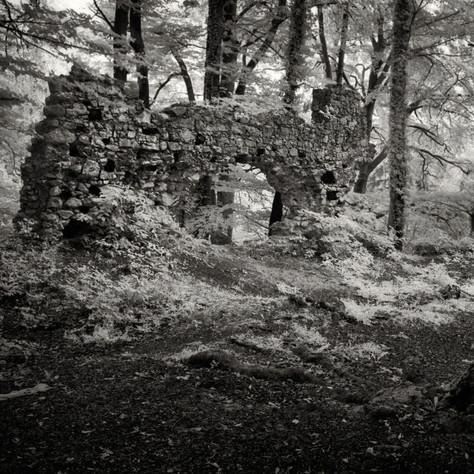 castle Eckenstein 1