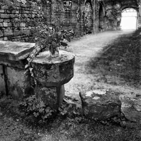 carthusian monastery Seitz 9