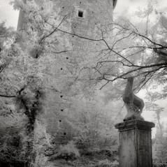 castle tower Kleinburg 2
