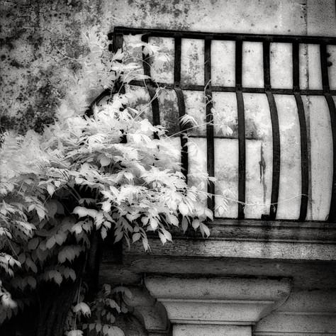 mansion Raunach 6