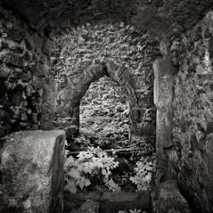 castle Wiederdriess 6