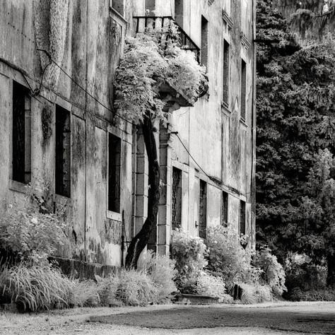 mansion Raunach 5