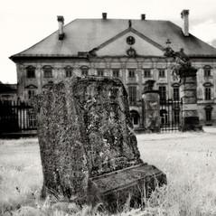 mansion Dornau 7