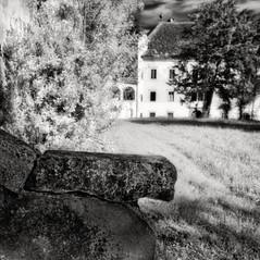 manor Ponawitsch 2