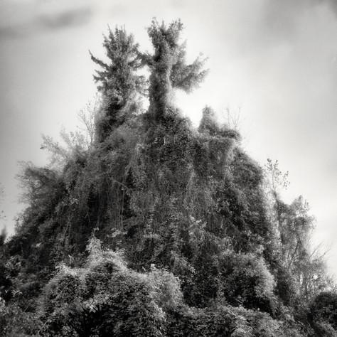 castle Ortenegg 5