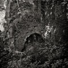 castle Wiederdriess 4