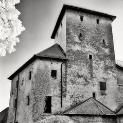 castle Altenburg 2