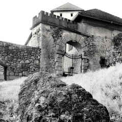 castle Altenburg 1