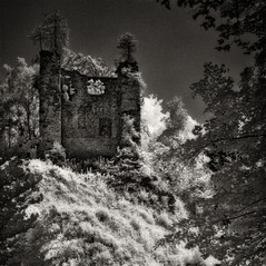 castle Wiederdriess 2