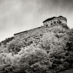 castle Löwenberg 1