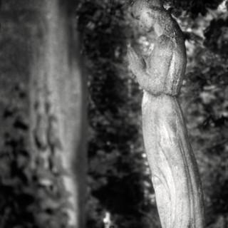 graveyard aristocracy 25