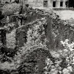 castle Stein 5