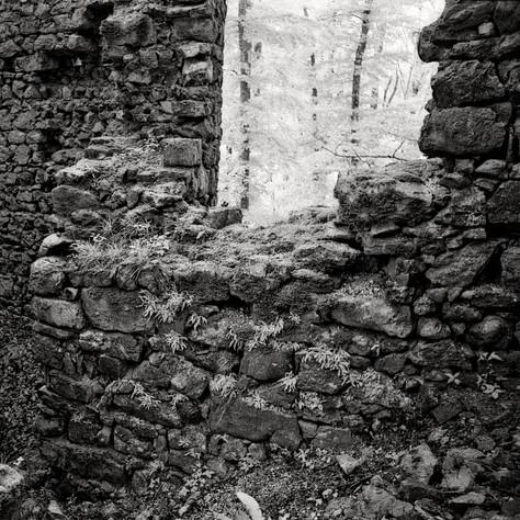castle Steegberg 4