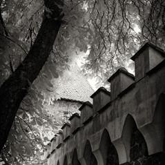 castle Werde 5