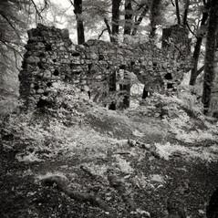 castle Eckenstein 4