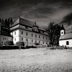 mansion Schönegg 5