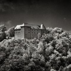 castle Reichenburg 1