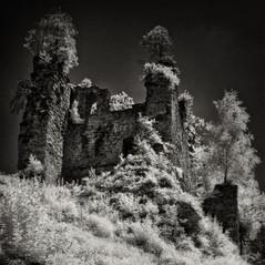 castle Wiederdriess 9