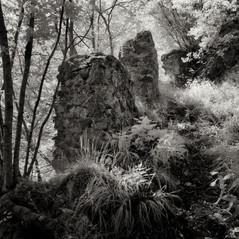 castle Weitenstein 4