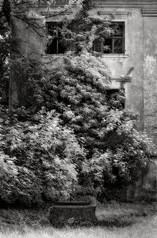 dvorec Ravne+ l_08.jpg