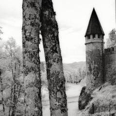 castle Schneeberg 8