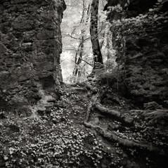 castle Rudeneck 4