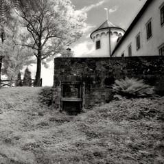 castle Wagensperg 2