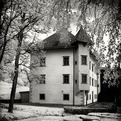 manor Törmetsh 1