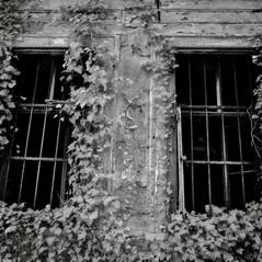 mansion Matzenau 9